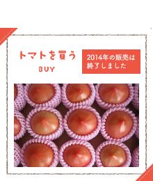 トマトを買う