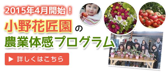 小野花匠園農業体感プログラム